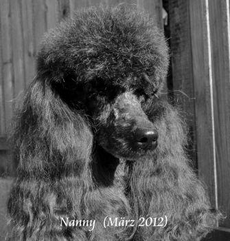 NannyMaerz_2012HP